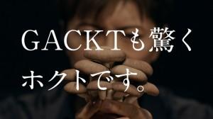 Barks-hoktocm-009