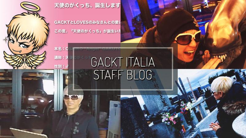 GACKT ITALIA STAFF BLOG – FEB 04 2017