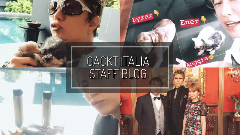 GACKT ITALIA STAFF BLOG – LUG 29 2018