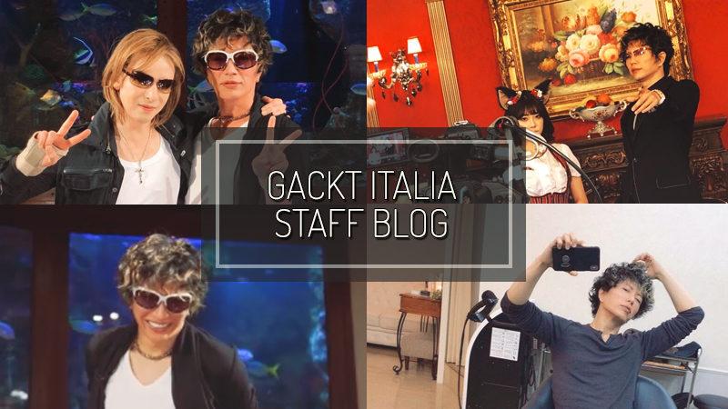 GACKT ITALIA STAFF BLOG – NOV 25 2018