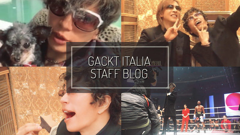 GACKT ITALIA STAFF BLOG – GEN 06 2019