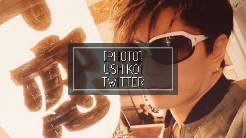 [PHOTO] USHIKOI TWITTER – DEC 26 2019